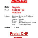 2radbasilisk_neufahrzeug-gepida-fastida-pro-45kmh